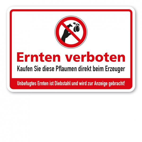 Ernteschild / Verbotsschild Ernten verboten - Kaufen Sie diese Pflaumen direkt beim Erzeuger - Unbefugtes Ernten ist Diebstahl und wird zur Anzeige gebracht – mit Verbotszeichen Pflaume