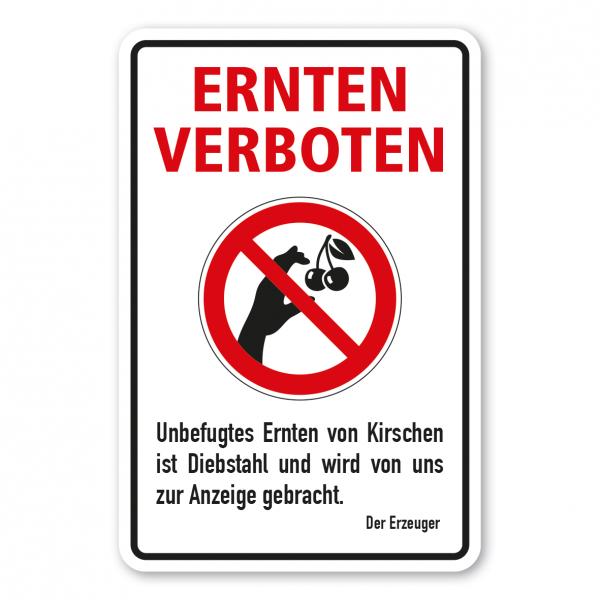 Ernteschild / Verbotsschild Ernten verboten - Unbefugtes Ernten von Kirschen ist Diebstahl und wird von uns zur Anzeige gebracht – mit Verbotszeichen Kirsche