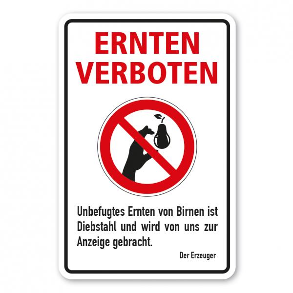 Ernteschild / Verbotsschild Ernten verboten - Unbefugtes Ernten von Birnen ist Diebstahl und wird von uns zur Anzeige gebracht – mit Verbotszeichen Birne