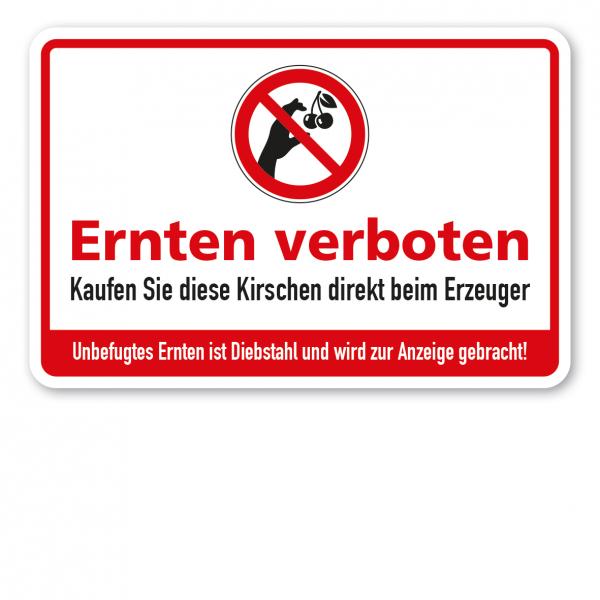 Ernteschild / Verbotsschild Ernten verboten - Kaufen Sie diese Kirschen direkt beim Erzeuger - Unbefugtes Ernten ist Diebstahl und wird zur Anzeige gebracht – mit Verbotszeichen Kirsche